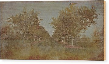 Garden 1 Wood Print by Inesa Kayuta