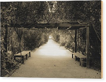 Garden Arbor In Sepia Wood Print by DigiArt Diaries by Vicky B Fuller