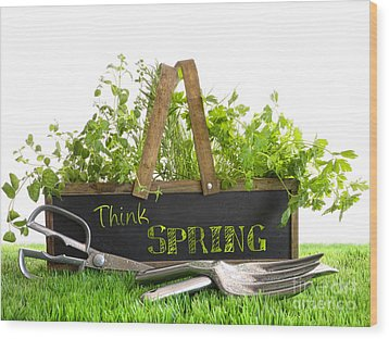 Garden Box With Assortment Of Herbs And Tools Wood Print by Sandra Cunningham