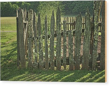 Wood Print featuring the photograph Garden - Fence by Nikolyn McDonald