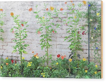 Wood Print featuring the photograph Garden Florals by Carolyn Dalessandro
