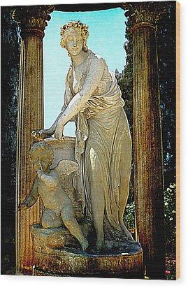 Wood Print featuring the photograph Garden Goddess by Lori Seaman