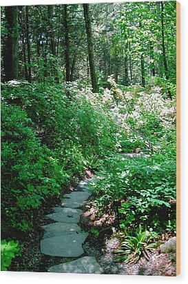 Garden In The Woods Wood Print by Deborah Dendler