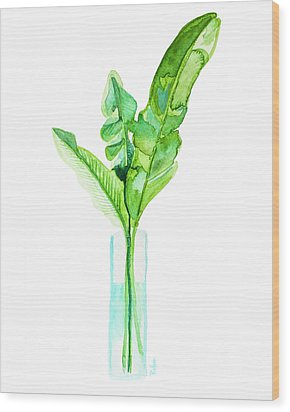 Garden Indoors Wood Print by Roleen Senic