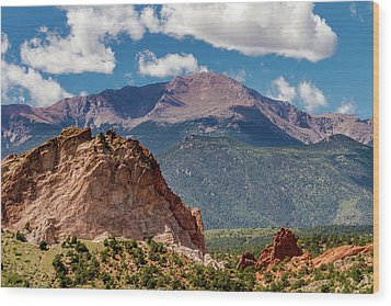 Wood Print featuring the photograph Garden Of The Gods And Pikes Peak by Bill Gallagher