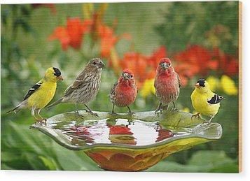 Garden Party Wood Print by Bill Pevlor