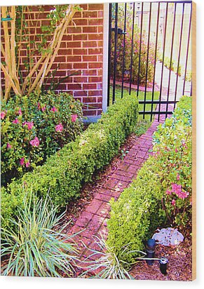 Garden Path Wood Print by Diane Ferguson