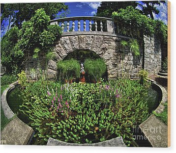 Wood Print featuring the photograph Garden Pond by Mark Miller