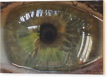 Garden Reflected In Eye Wood Print by Shirley anne Dunne