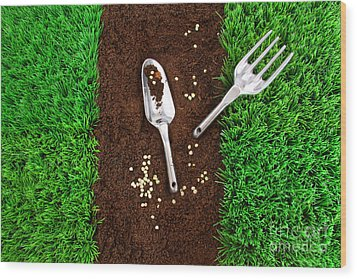 Garden Tools On Earth Wood Print by Sandra Cunningham