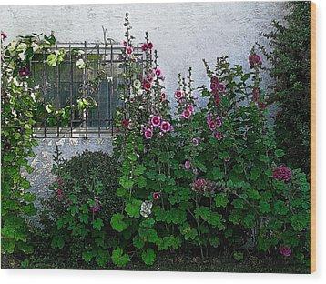 Garden Window Wood Print