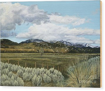 Garner Valley Meadow Wood Print