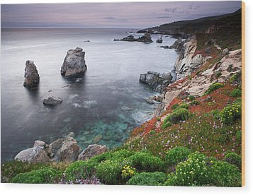 Garrapata Shore Wood Print by Eric Foltz
