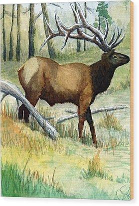 Gash Flats Bull Wood Print by Jimmy Smith