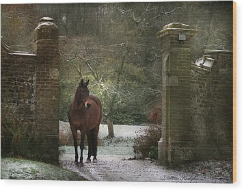 Gate To Another World Wood Print