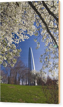 Gateway Arch With Cherry Tree In Bloom. Wood Print by Sven Brogren