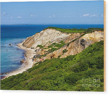 Gay Head Cliffs Wood Print by Mark Miller