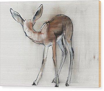 Gazelle Fawn  Arabian Gazelle Wood Print by Mark Adlington