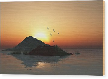 Geese And Sunset Wood Print by David Lane