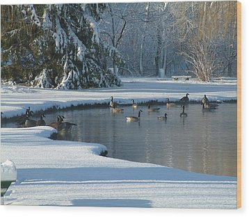 Geese On Pond Wood Print by Gregory Jeffries