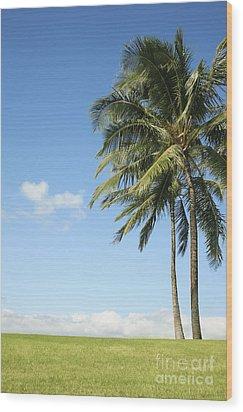 Generic Palm Tree Wood Print by Brandon Tabiolo - Printscapes