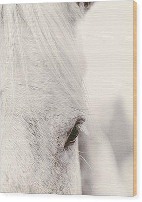 Gentle Beauty Wood Print by Debby Herold