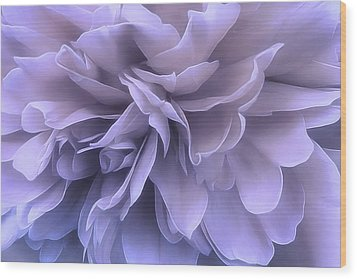 Wood Print featuring the photograph Gentle Breeze by Darlene Kwiatkowski