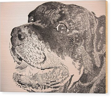 Gentle Giant Wood Print by Robbi  Musser