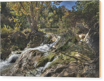 Gentle Mountain Stream Wood Print by Tamyra Ayles