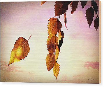Gently September Wood Print by Bob Orsillo