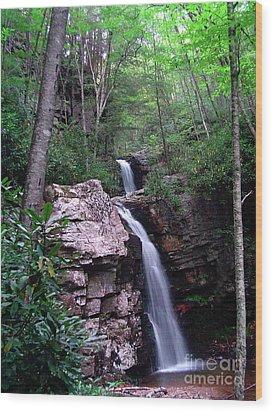Gentry Creek - Double Falls Wood Print