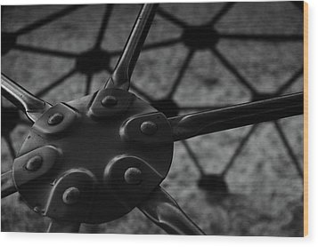 Wood Print featuring the photograph Geodome Climber 2 by Richard Rizzo