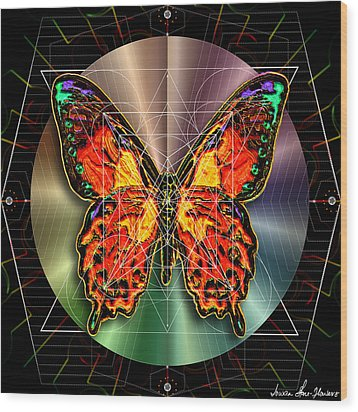 Geometron Fyr Lepidoptera Wood Print