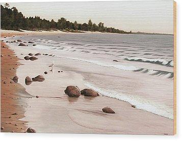 Georgian Bay Beach Wood Print