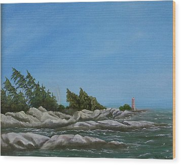 Georgian Bay Wood Print by Rebecca  Fitchett