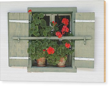 Geranium Window Wood Print by Frank Tschakert