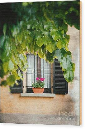 Wood Print featuring the photograph Geraniums On Windowsill by Silvia Ganora