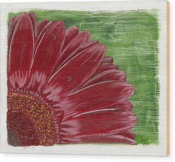 Gerber Daisy- Red Wood Print by Susan Schmitz