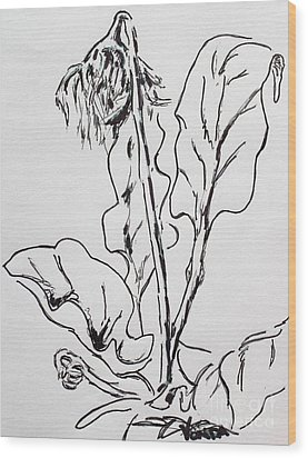 Wood Print featuring the drawing Gerber Study I by Vonda Lawson-Rosa