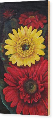 Gerbera Wood Print by Dana Redfern
