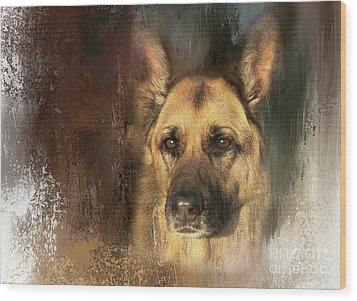 German Shepherd Portrait Color Wood Print