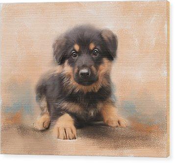 German Shepherd Puppy Portrait Wood Print by Jai Johnson