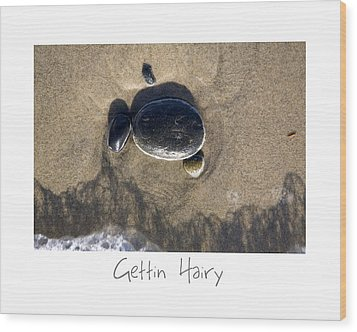 Gettin Hairy Wood Print by Peter Tellone