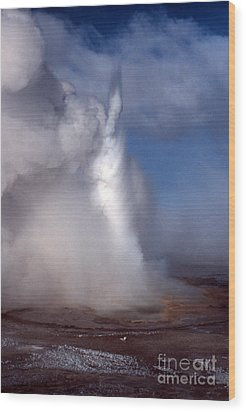 Wood Print featuring the photograph Geyser In Winter by Edward R Wisell