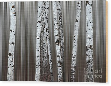 Wood Print featuring the photograph Ghost Forest 1 by Bob Christopher