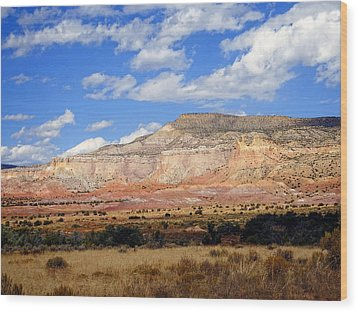 Wood Print featuring the photograph Ghost Ranch New Mexico by Kurt Van Wagner