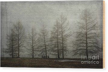 Ghost Trees Wood Print by Terry Rowe
