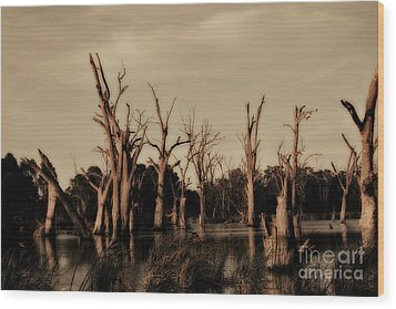 Wood Print featuring the photograph Ghostly Trees V2 by Douglas Barnard