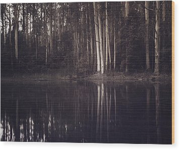 Wood Print featuring the photograph Ghosts Of My Heart by Amy Weiss