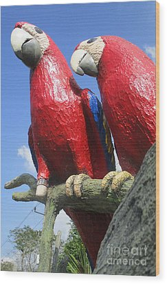 Giant Macaws Wood Print by Randall Weidner